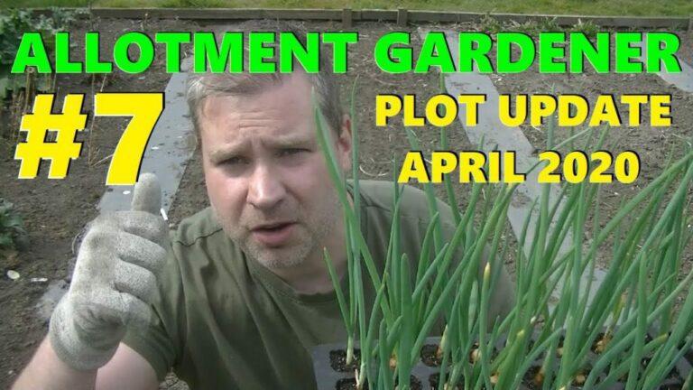 #Nottingham allotments Vlog Lockdown Update