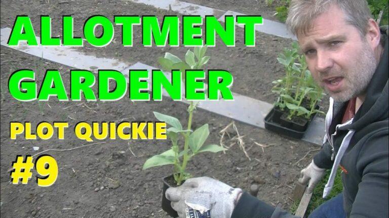 Growing Vegetables Nottingham vlog