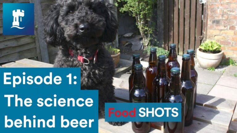 Beer Brewing Explained #uon Tristan Bew