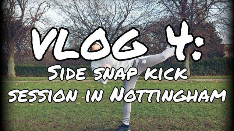 Covid Karate Class Online Vlog