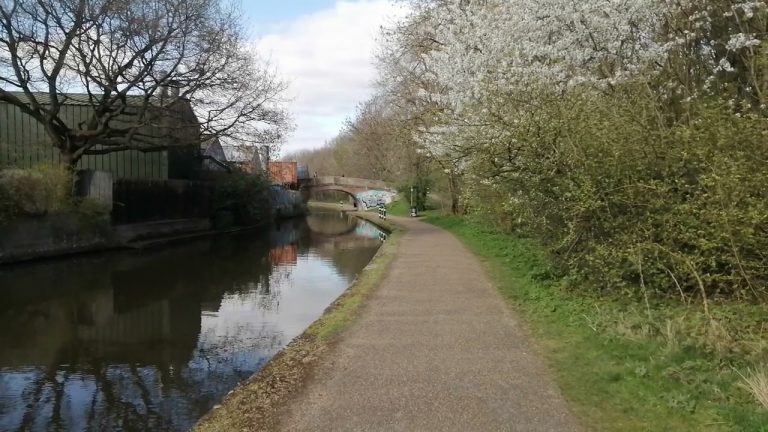 Beeston Canal Blossom